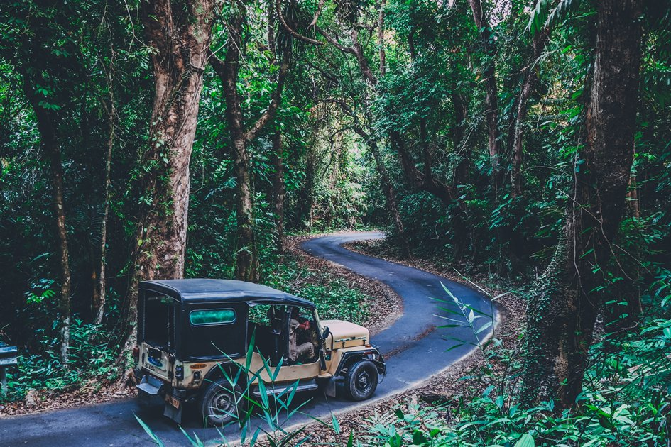 Jeep driving through thick jungles of Andaman